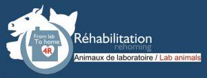 Logo GRAAL Réhabilitation