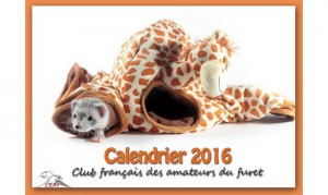 Calendrier-2016-2-2-big-1-www-cfafboutique-kingeshop-com